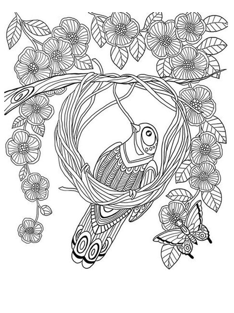 Раскраска антистресс. Птицы
