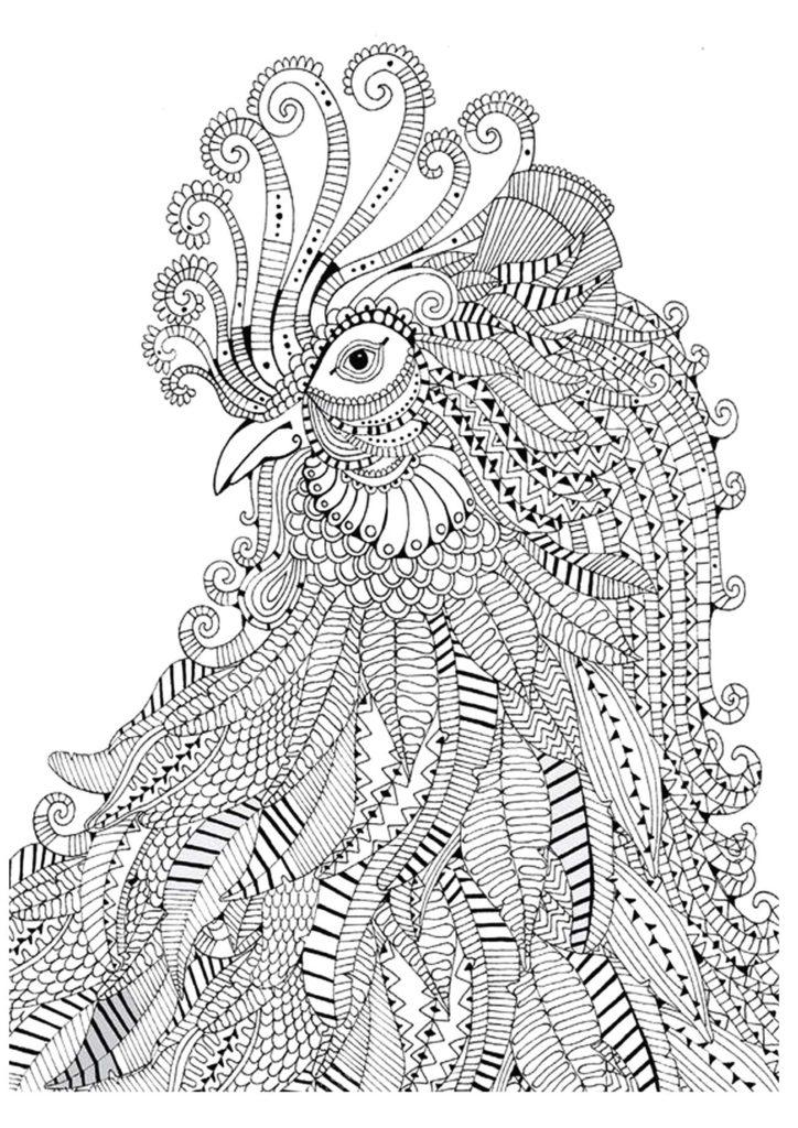 Петухи и курицы на раскрасках антистресс Большая подборка