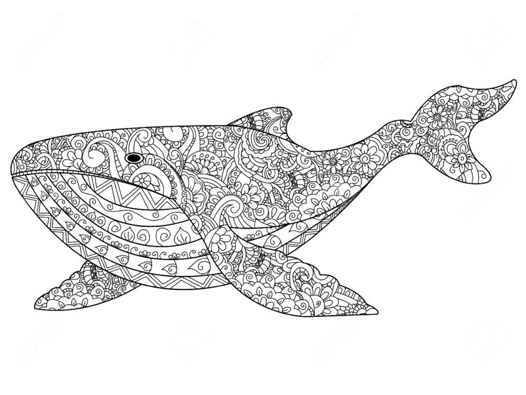 раскраска морские обитатели