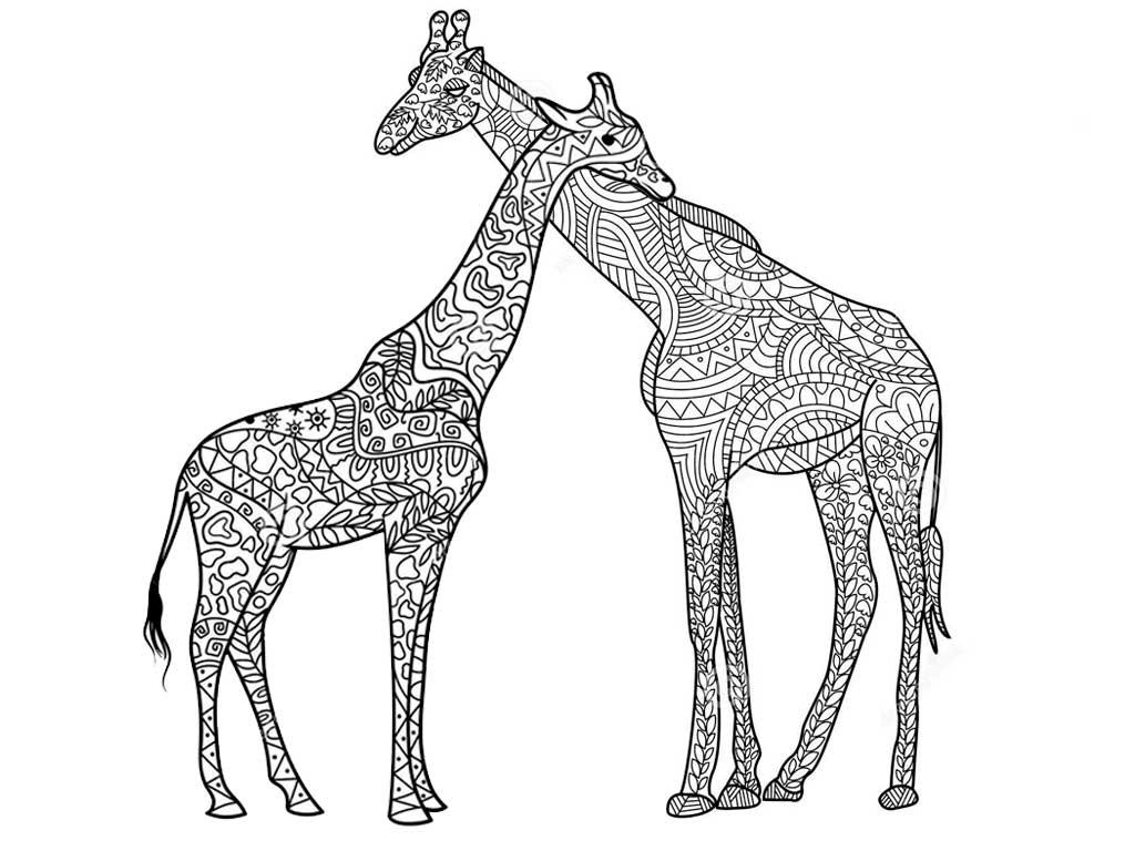 Африканские животные. Раскраски антистресс - Сайт ...