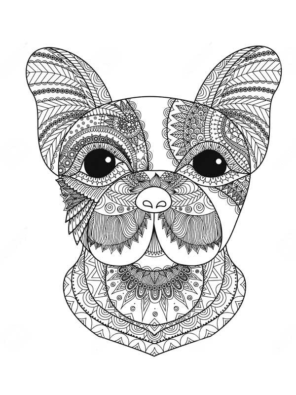 Раскраски антистресс. Собаки - Сайт толстушки Хельги