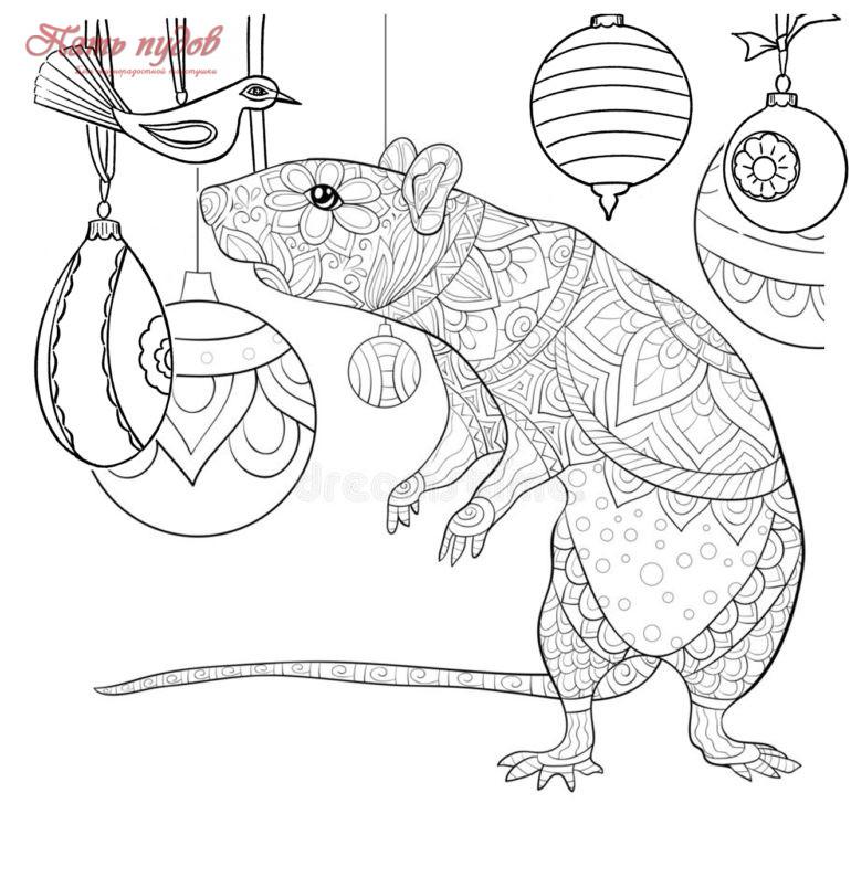 Крыса. Раскраска для взрослых