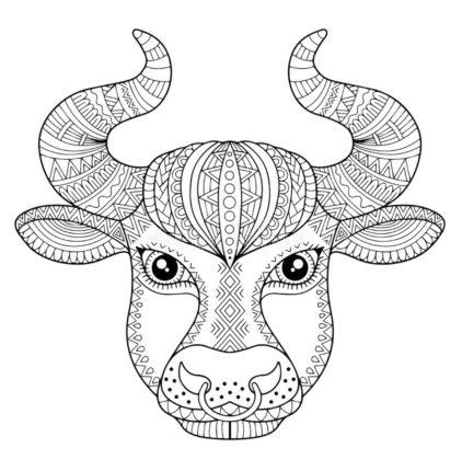 бык. раскраска антистресс